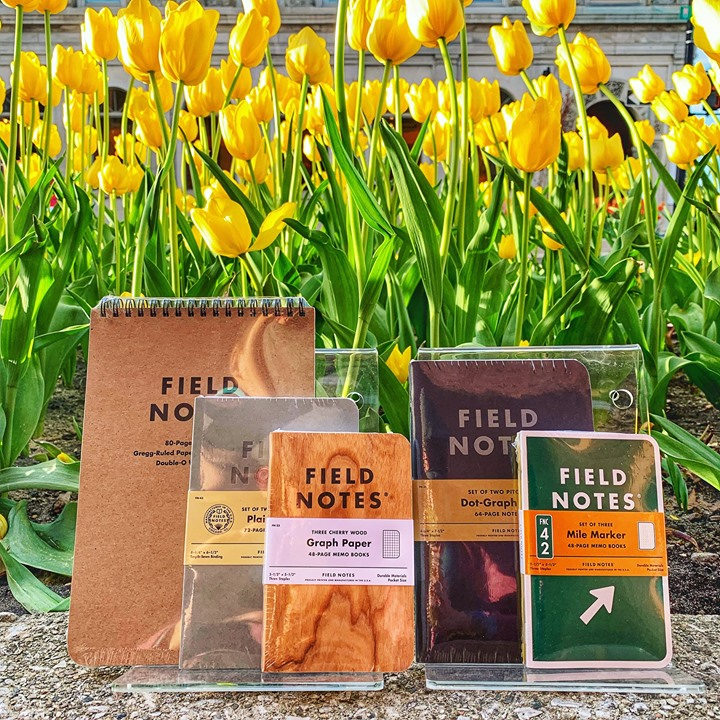 Visiting the Tulip festival this week or planning a vac...